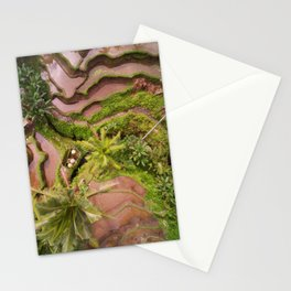 Rice Field II Stationery Cards