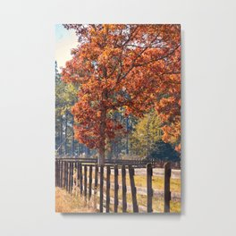 North Georgia Fall Colors 5 Metal Print