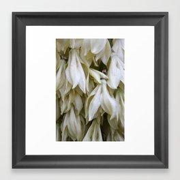 Hanging Petals Framed Art Print