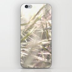 scrub iPhone & iPod Skin