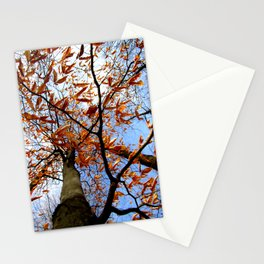 Autumn's glory Stationery Cards