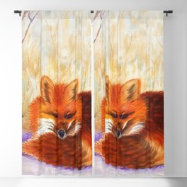 Red fox small nap | Renard roux petite sieste Blackout Curtain
