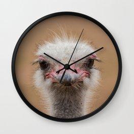 Common Ostrich portrait Wall Clock