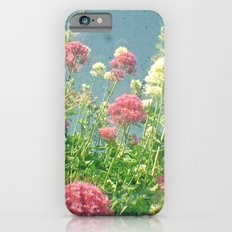 Raspberries and Cream iPhone 6s Slim Case