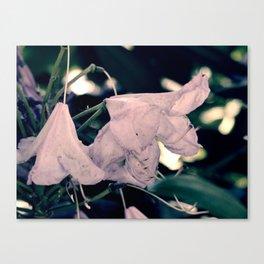 Bluish bells Canvas Print