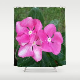 TRIO IN PINK Shower Curtain