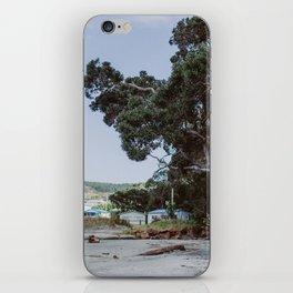 Wild Playground in New Zealand iPhone Skin