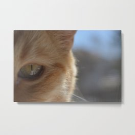 Pocko's Peepers Metal Print