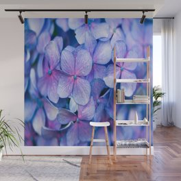 Hydrangea Flowers : Periwinkle Blue Lavender Pink Wall Mural