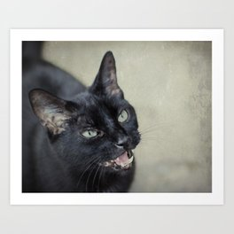 Werecat Art Print