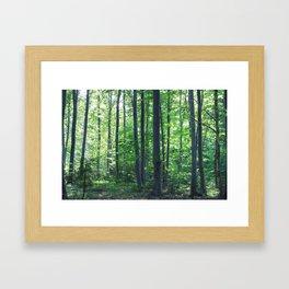 morton combs 02 Framed Art Print