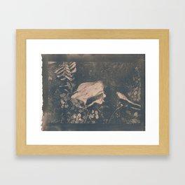 Lifetime Framed Art Print
