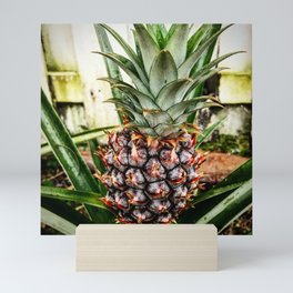 Mine-apple Pineapple Mini Art Print