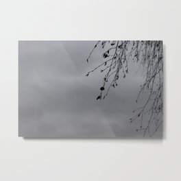 Skansen Grey #5 Metal Print