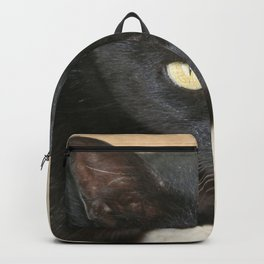 Beautiful Black Cat Portrait  Backpack