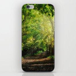 Fall Splendor iPhone Skin