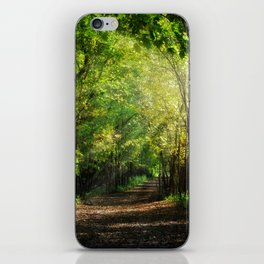 Fall Splendor iPhone Skin