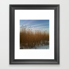 Waterside Framed Art Print