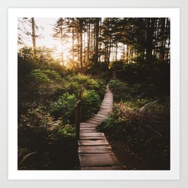 Trail leading to the light at Cape Flattery Art Print