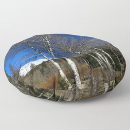 Rocky Mountain Aspens Floor Pillow