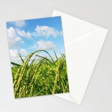 Ripe Rice Stationery Cards