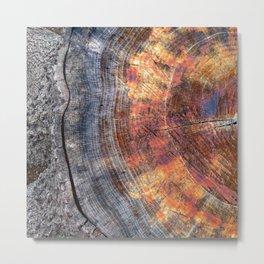 Macro Tree Stump Ring Metal Print