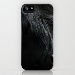 Minimalist Black Scottish Highland Cattle Portrait - Animal Photography iPhone Case