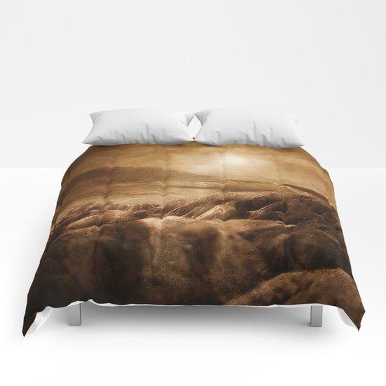 Chapter IX Comforters
