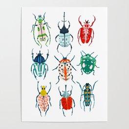 Garden Beetles Poster