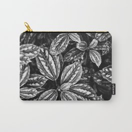 Variagated Carry-All Pouch