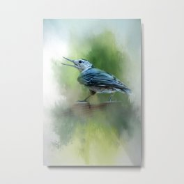 Summer Nuthatch Metal Print