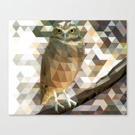 Burrowing Owl - Low Poly Technique Canvas Print