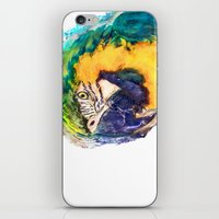 parrot iPhone & iPod Skins featuring Parrot by jbjart