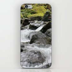 Deep in the Woods iPhone & iPod Skin