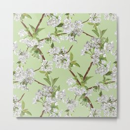 Early Blossom Metal Print