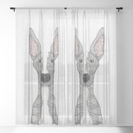Blue and White Greyhound (white snout) Sheer Curtain