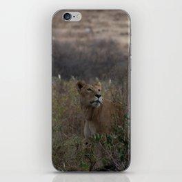 Proud Lioness iPhone Skin