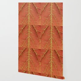 Redwood leaf print Wallpaper