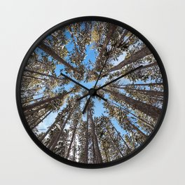 Yellowstone National Park - Lodgepole Forest Wall Clock