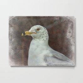 Through the Gulls Eyes Metal Print