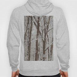 Trees in winter Hoody