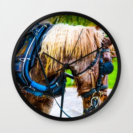 Majestic Beauty Wall Clock