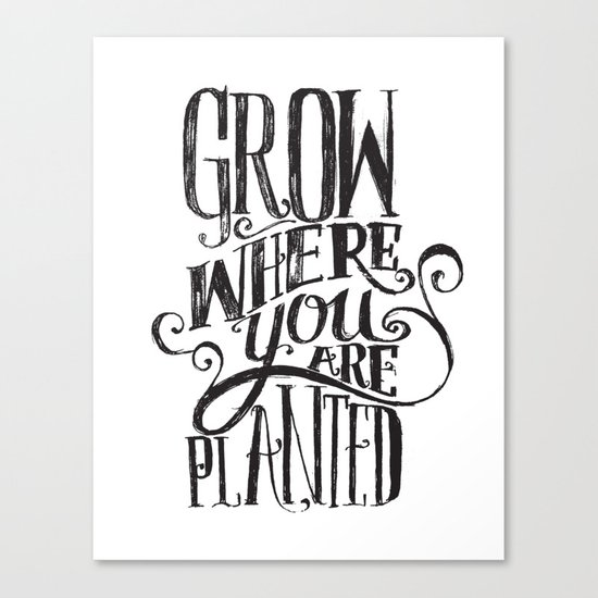 Grow Where You Are Planted Canvas Print