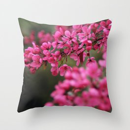 Crap Apple Blossoms Throw Pillow
