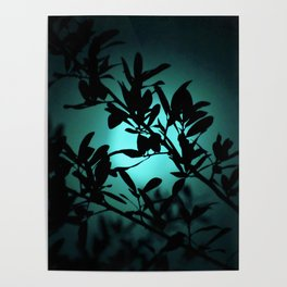 Dreaming of Teal You Poster