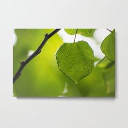 The green Metal Print