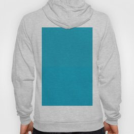Teal / Turquoise / Blue Green Solid Color Pairs to Coloro 2021 Trending Color AI Aqua 098-59-30 Hoody