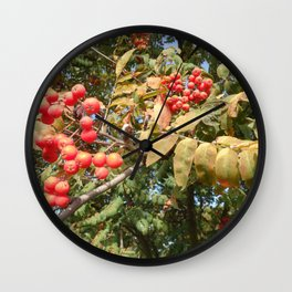 AUTUMN MOUNTAIN ASH TREE Wall Clock