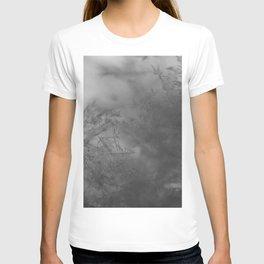 Admiral Fitzroy Storm Glass T-shirt