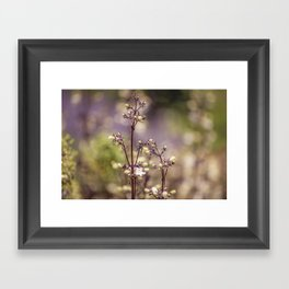 Fairy bloom Framed Art Print